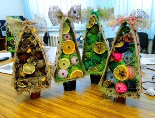 Экологический Новый год