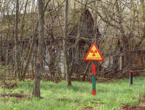 Последствия ЧАЭС для Беларуси